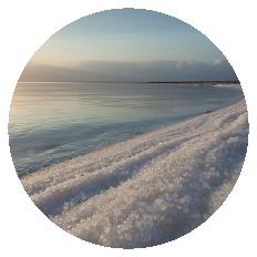 חופי ארץ ים המלח